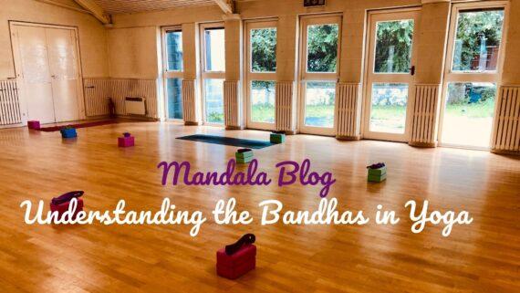 Understanding the bandhas in yoga blog